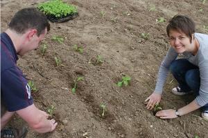 rosie-planting